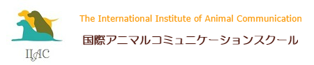 IIAC 国際アニマルコミュニケーションスクール