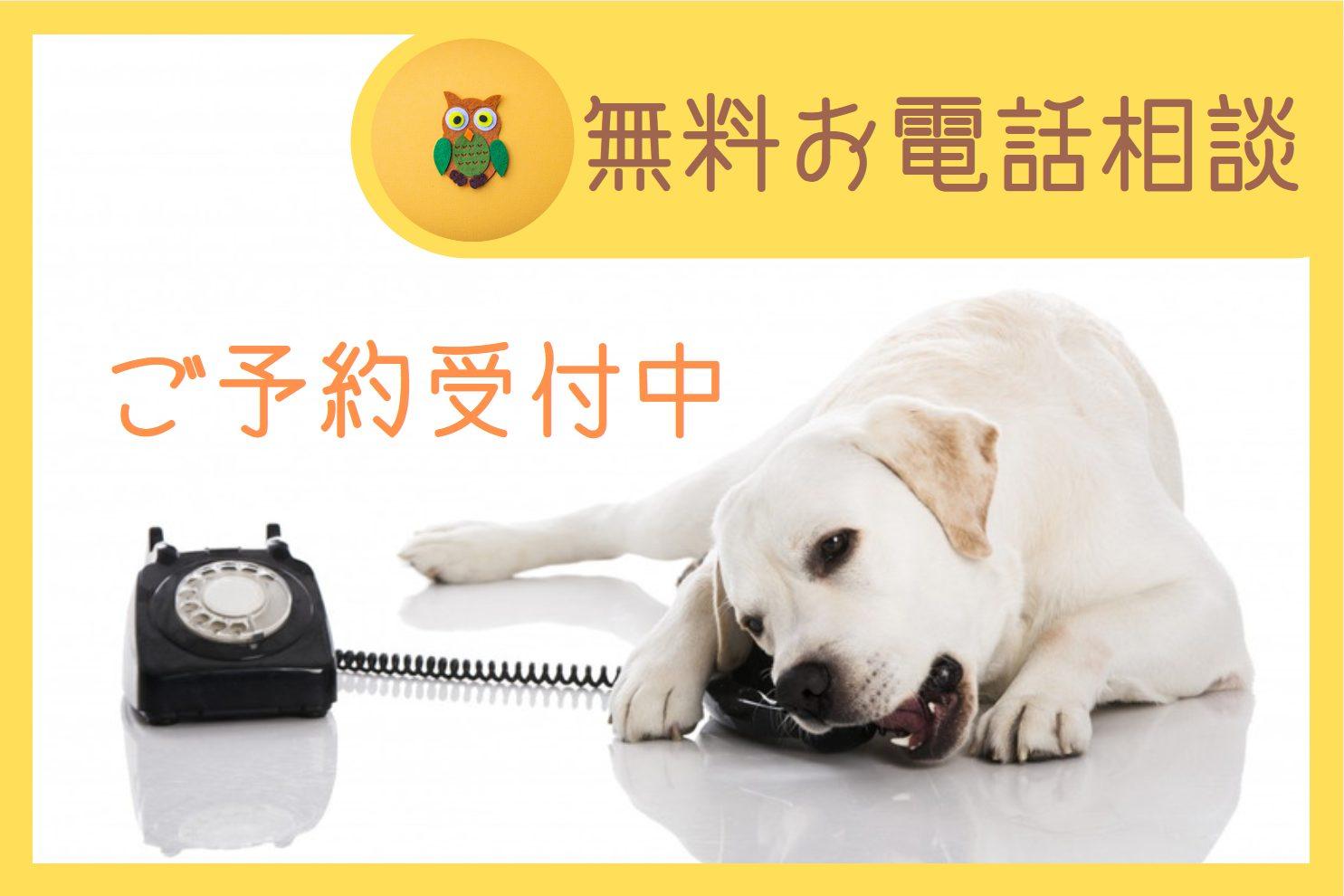 無料お電話相談